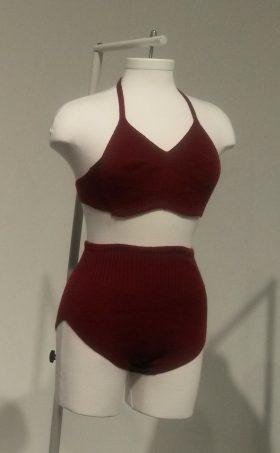 בגד ים 2 חלקים,ביקיני,אני פרידמן,ים,ביקיני ברזלים,עיצוב בגדי ים ,annie friedman,swimwear designer,